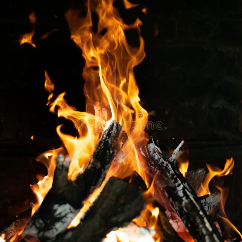 在篝火火炉的火火焰 免版税库存图片
