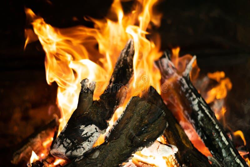 在篝火火炉的火火焰 免版税库存照片