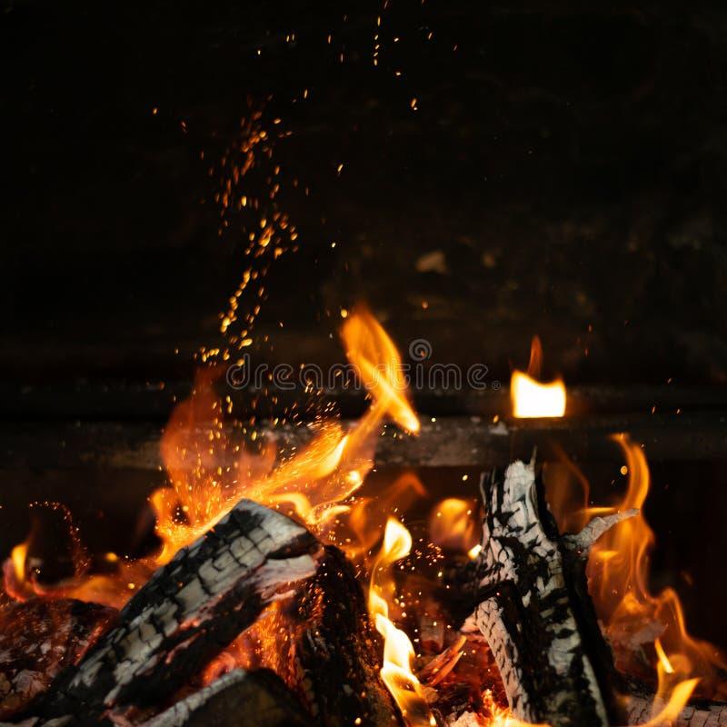 在篝火火炉的火火焰 免版税图库摄影