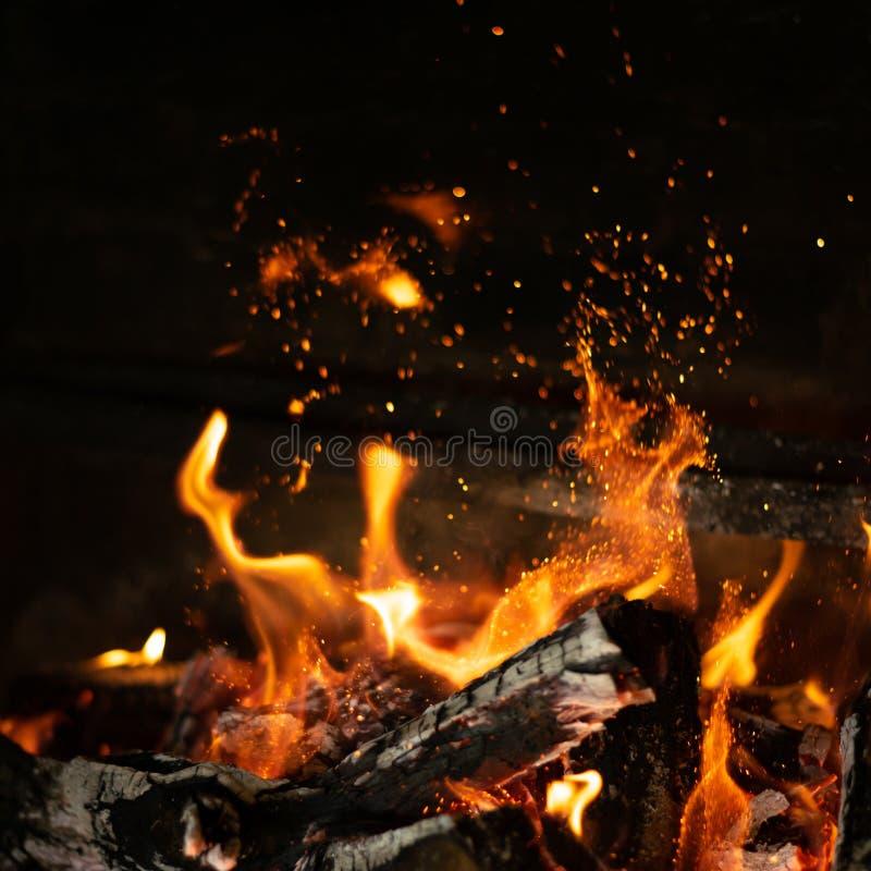 在篝火火炉的火火焰 库存照片