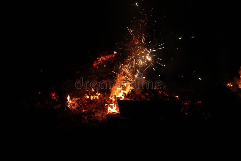 在篝火的夜烟花 免版税库存照片