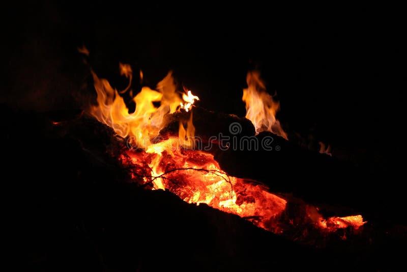 在篝火的夜烟花 库存照片