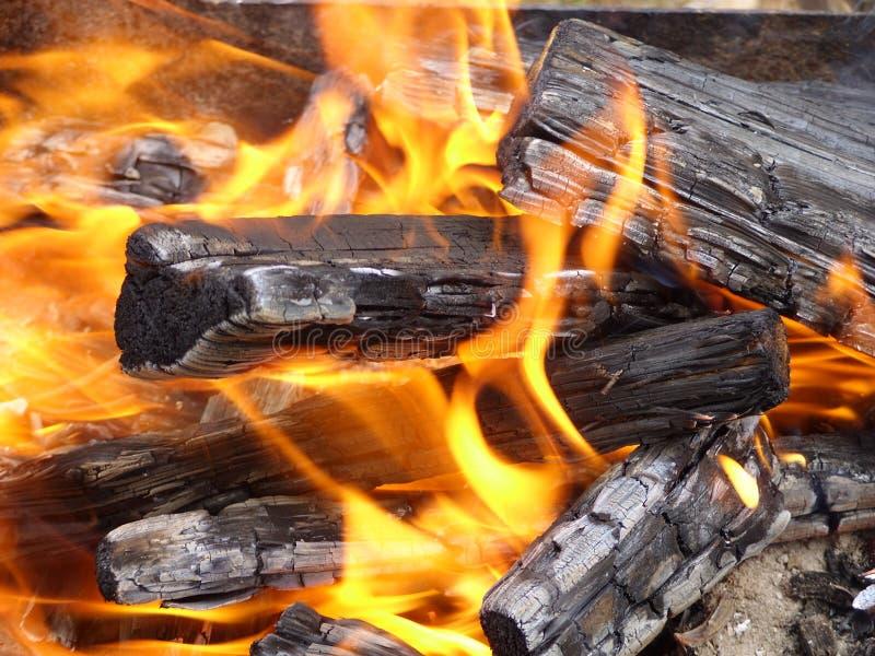 在篝火的接近的视图 免版税库存图片