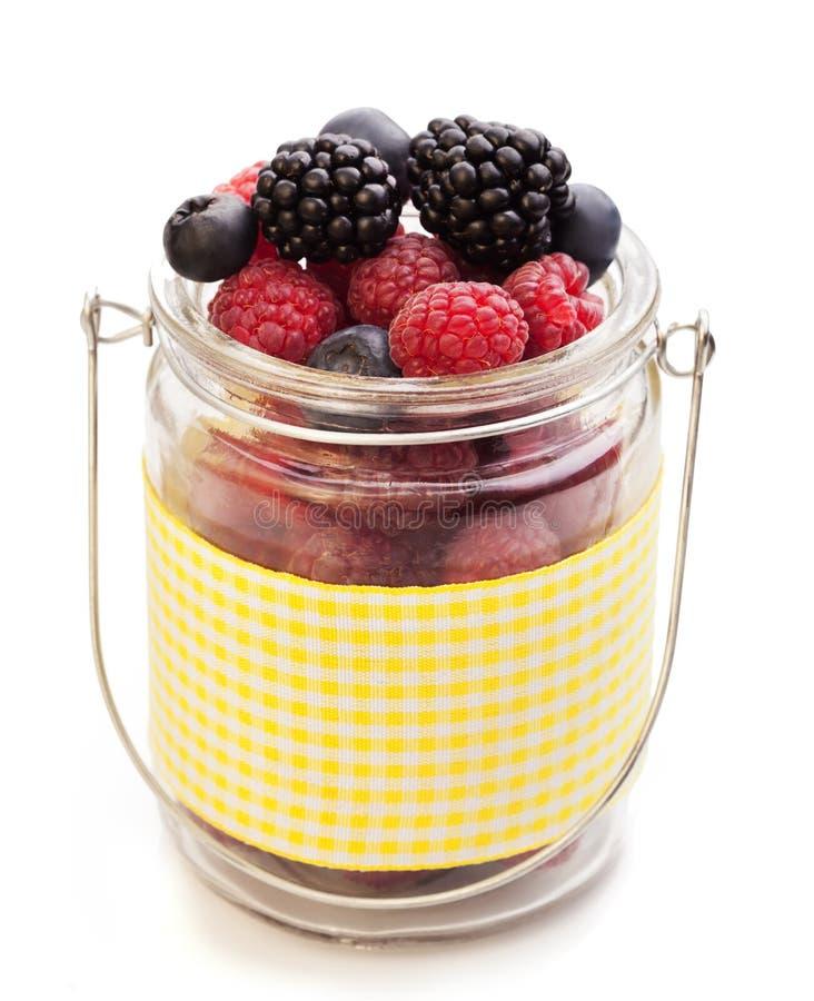 在篮子的不同的莓果 免版税库存照片