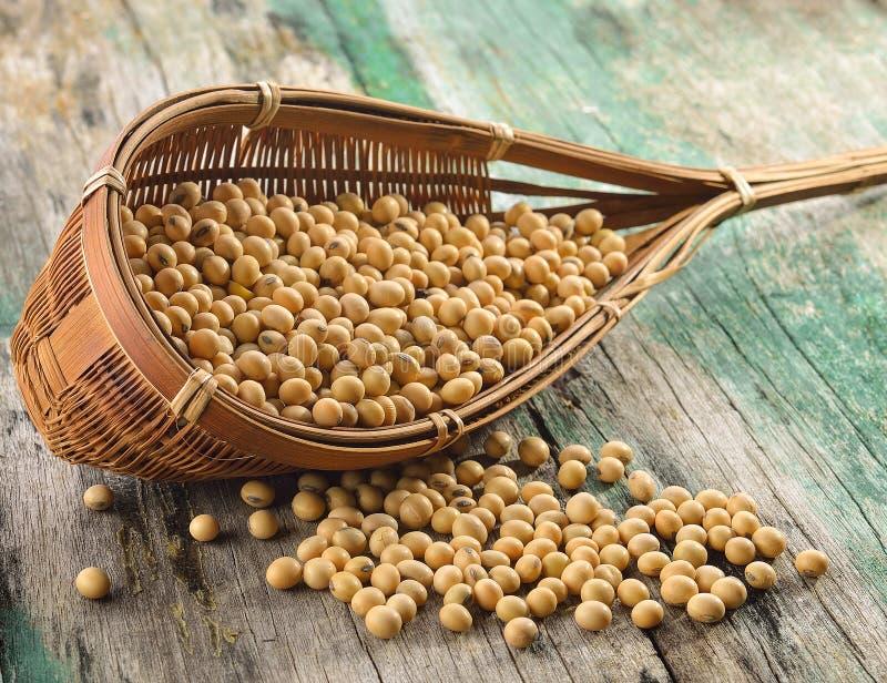 在篮子的大豆豆在木 库存图片