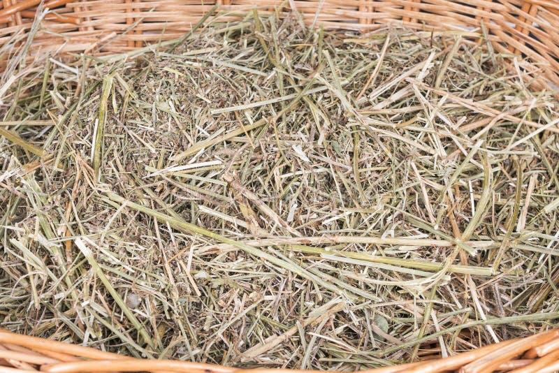 在篮子的干燥干草 免版税库存图片