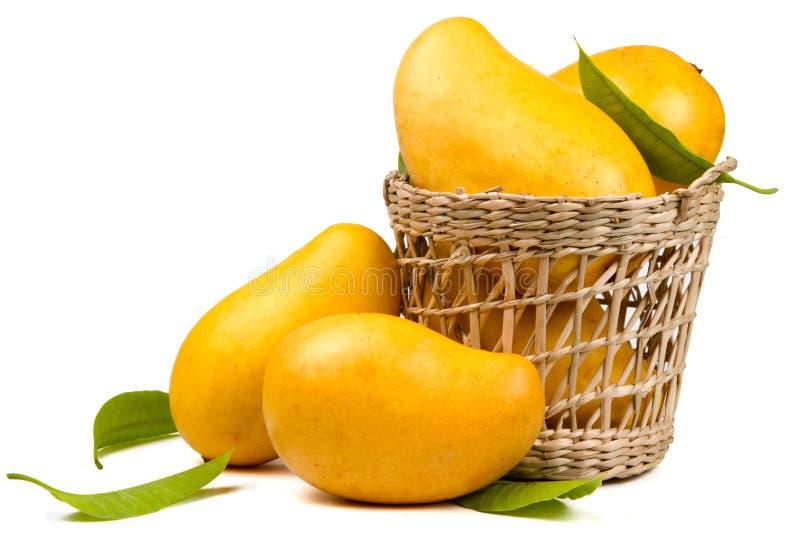 在篮子的成熟芒果果子 免版税库存照片
