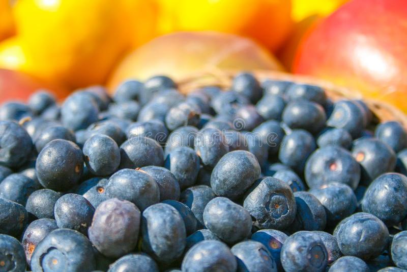 在篮子的新鲜的有机成熟蓝莓 库存图片