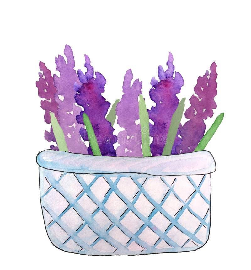 在篮子的淡紫色,水彩例证 皇族释放例证