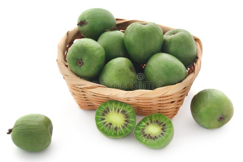 在篮子的猕猴桃莓果 免版税库存照片