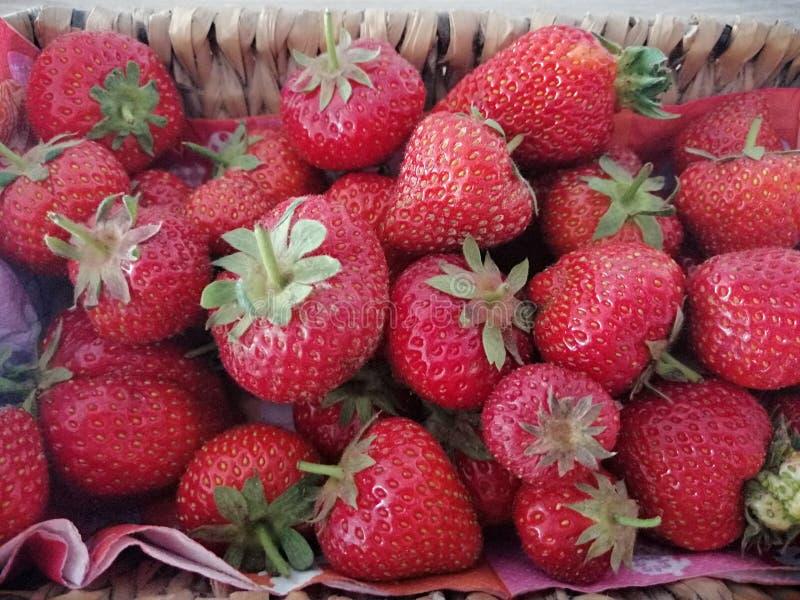 在篮子的红色成熟草莓从上面 免版税库存图片