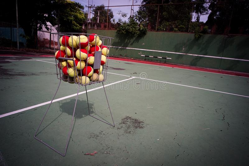 在篮子的网球 免版税库存照片