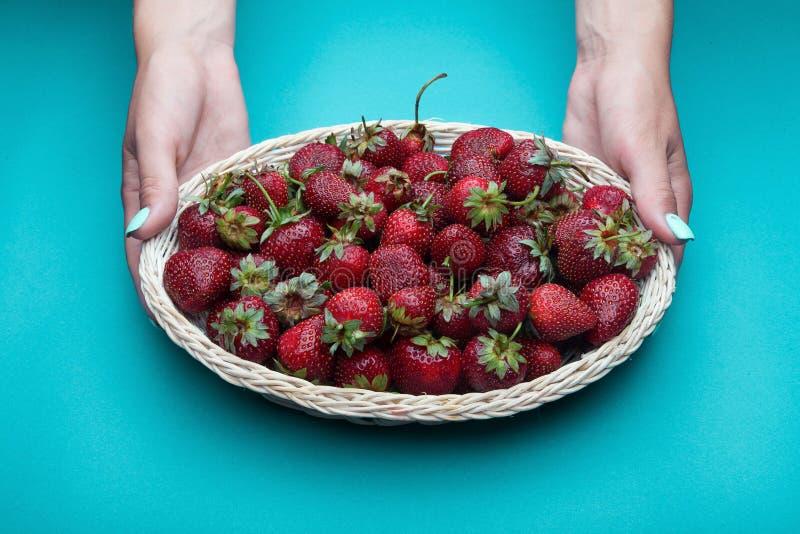 在篮子的草莓 女性现有量 库存照片