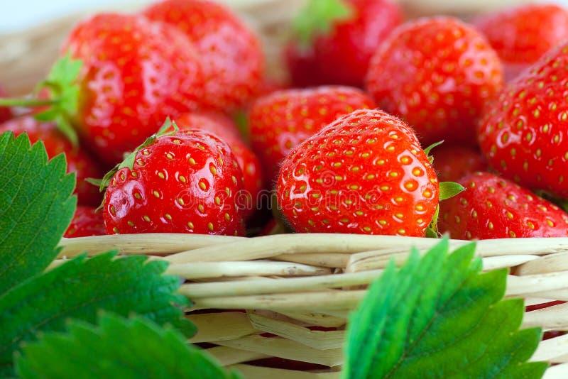 在篮子的草莓 库存图片