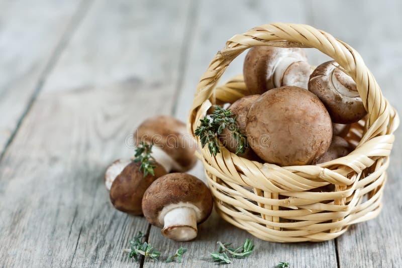 在篮子的蘑菇 免版税库存照片