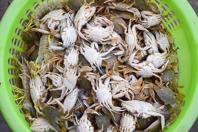 在篮子的螃蟹 图库摄影