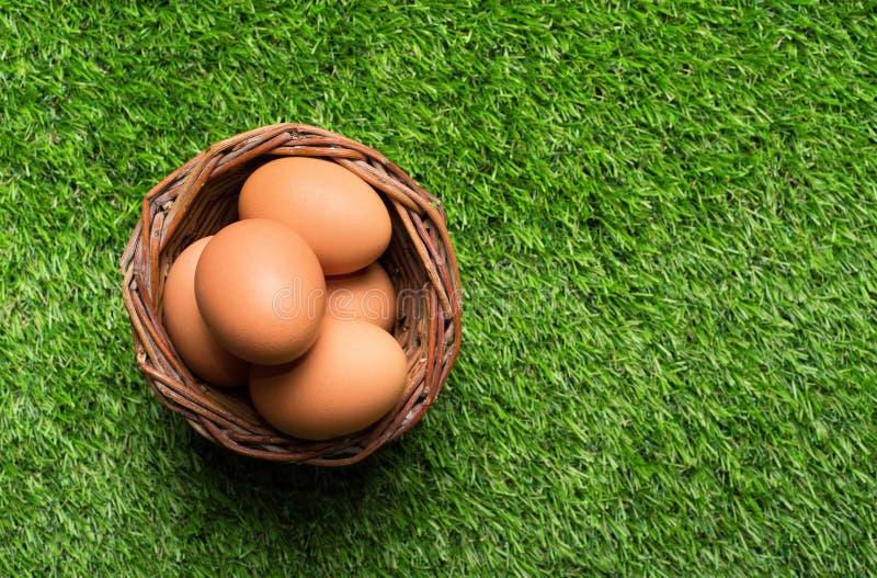 在篮子的鸡鸡蛋在草 免版税库存照片