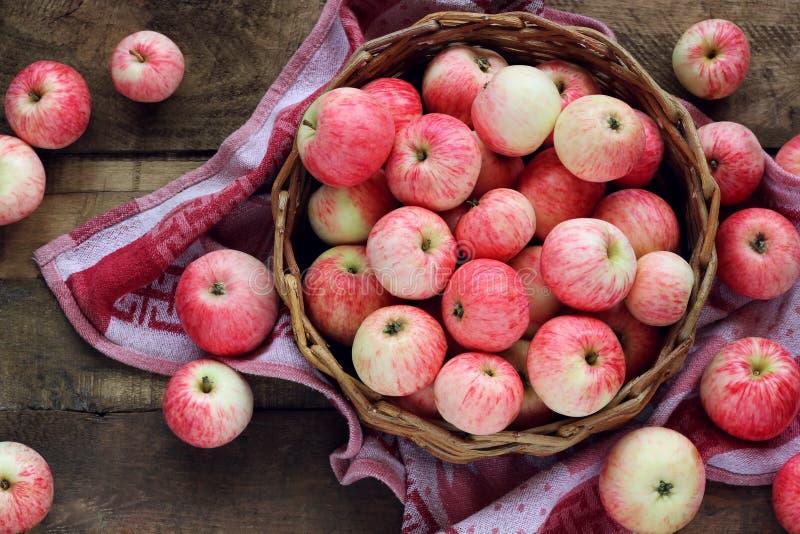 在篮子,看法的苹果从上面 库存照片