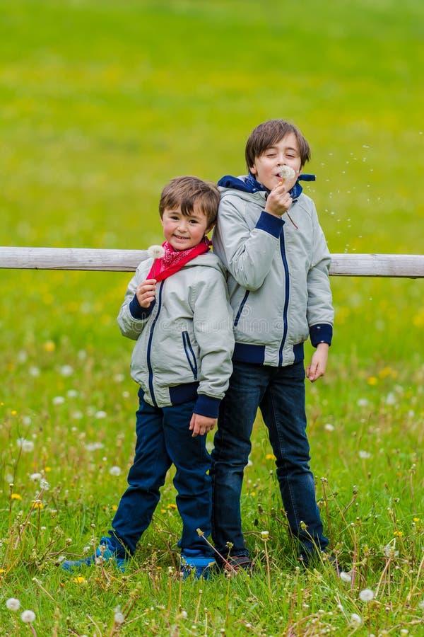 在篱芭倾斜的两个男孩 图库摄影
