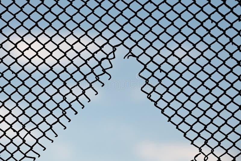 在篱芭剪影样式铁丝网的孔  库存照片