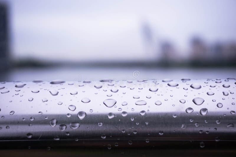 在篱芭的水滴 库存照片