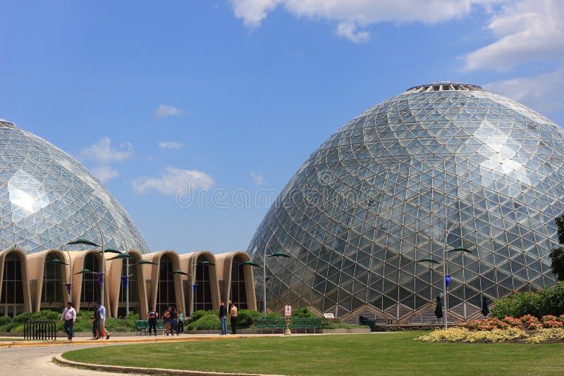 在米歇尔公园植物园的圆顶 库存照片