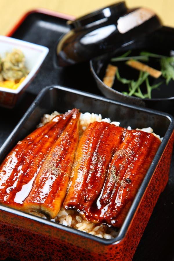 在米的被烤的鳗鱼 库存图片