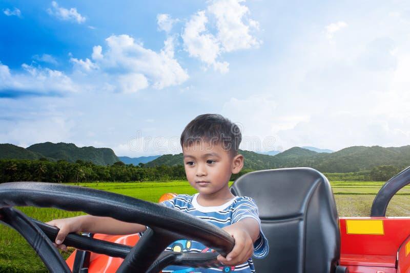 在米领域的亚洲小男孩司机拖拉机 库存图片