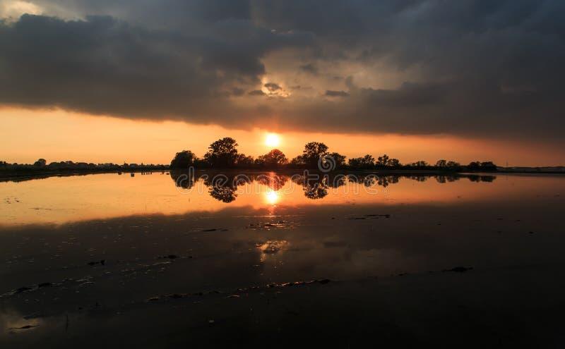 在米领域的日落 库存照片