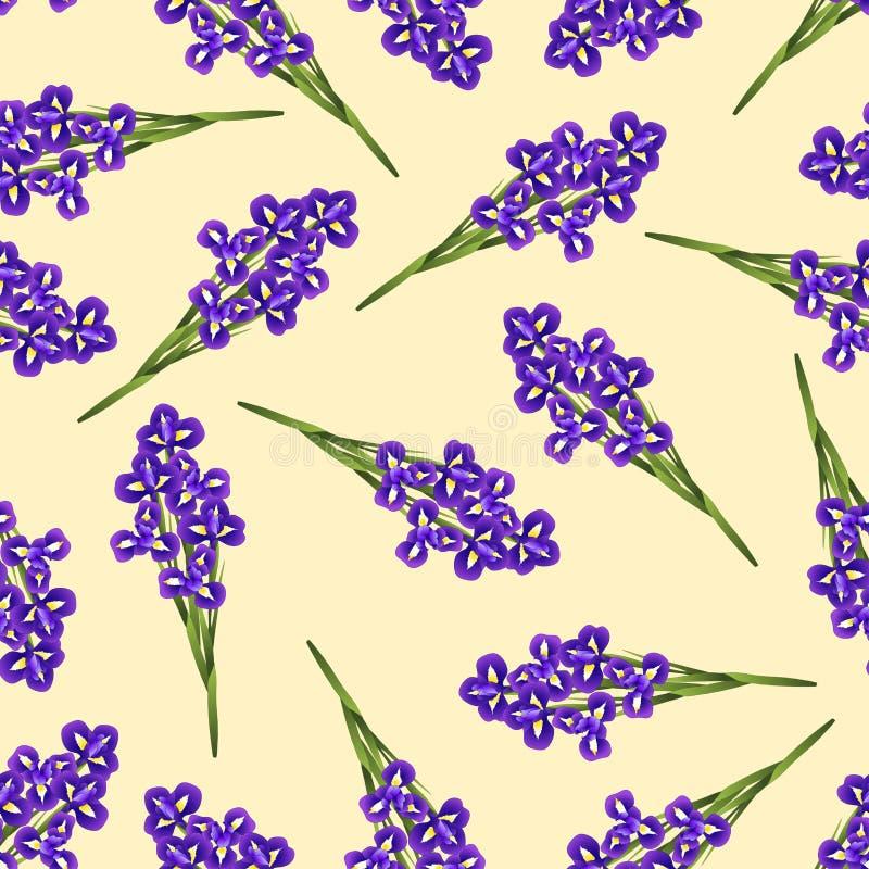 在米黄象牙背景的深蓝紫色虹膜花 也corel凹道例证向量 皇族释放例证