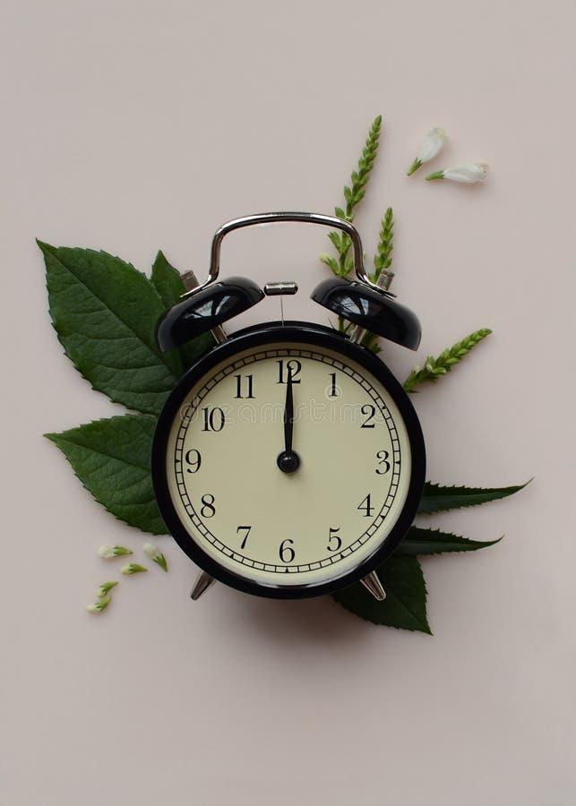 在粉红彩笔背景的一个黑书桌时钟与绿色叶子 库存图片