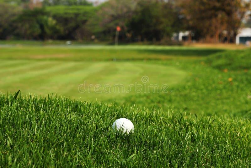 在粗砺的草的高尔夫球在航路 免版税库存图片