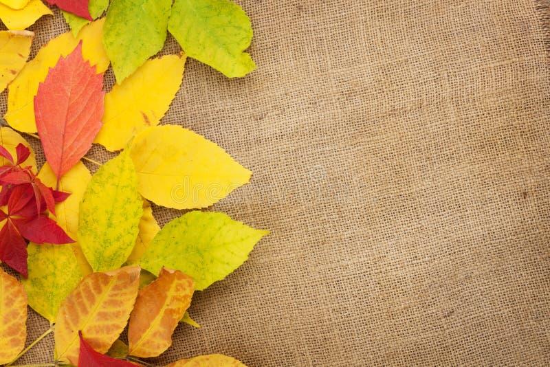 在粗麻布纹理背景的秋叶 免版税库存照片