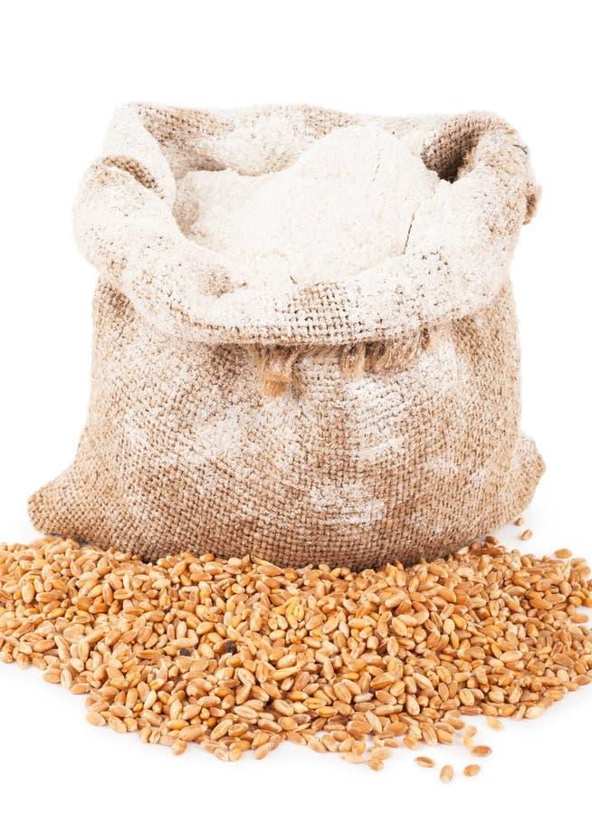 在粗麻布袋的面粉与麦子五谷 免版税图库摄影