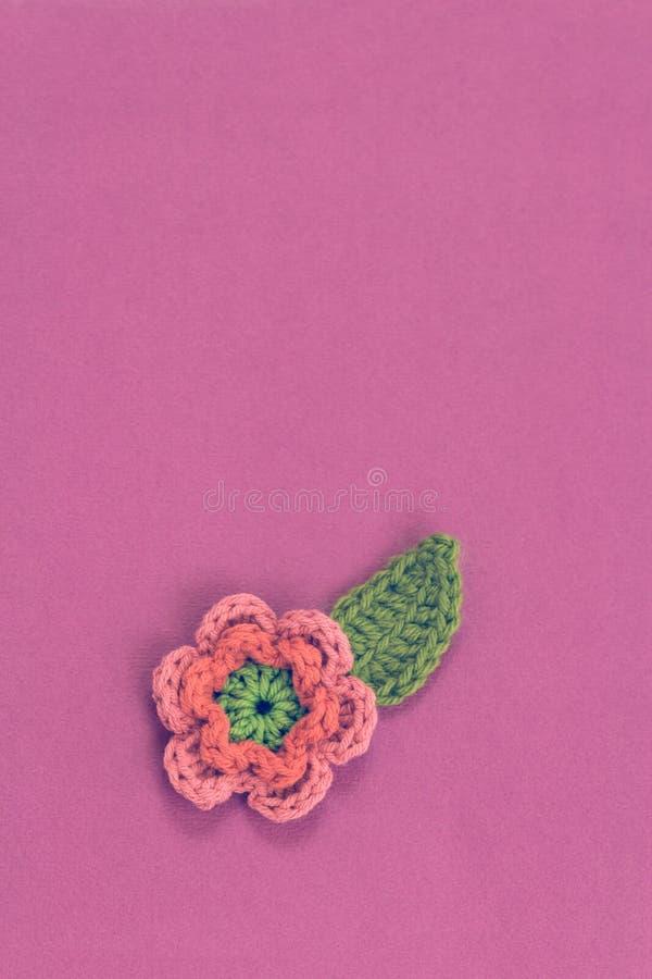 在紫色背景的唯一桃红色钩针编织的花 免版税库存照片