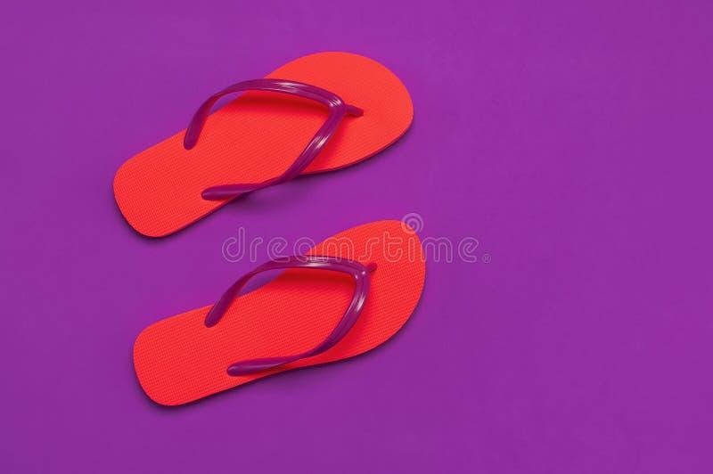 在紫色背景的珊瑚触发器 r 创造性的暑假旅行背景 妇女的夏天 图库摄影