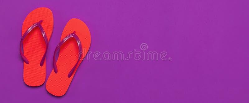 在紫色背景的珊瑚触发器 r 创造性的暑假旅行背景 妇女的夏天 免版税图库摄影