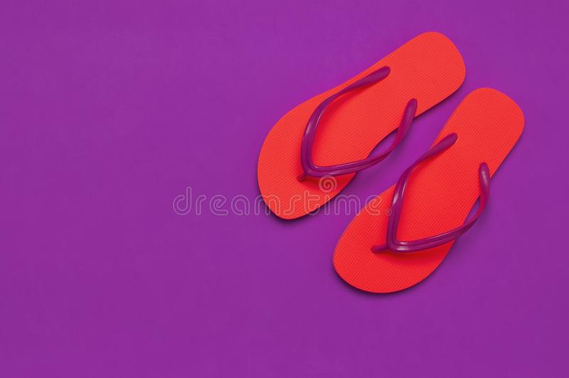 在紫色背景的珊瑚触发器 r 创造性的暑假旅行背景 妇女的夏天 库存图片