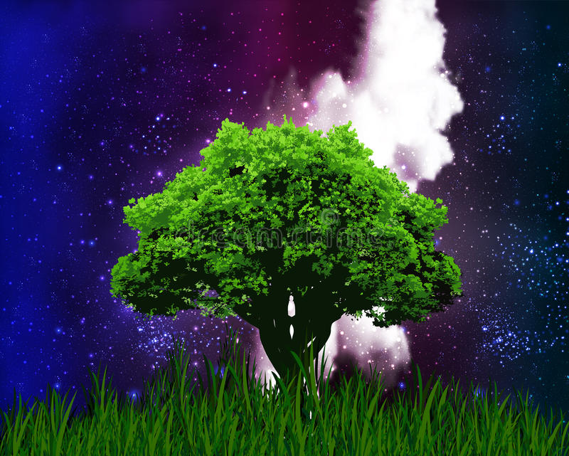 在繁星之夜天空的背景的一棵树 库存例证