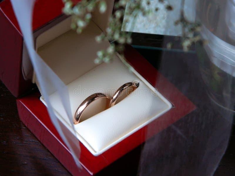 在红木箱子的婚姻的金黄圆环 免版税库存图片