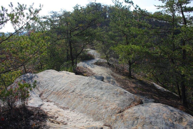 在红河峡谷的岩石足迹 库存图片