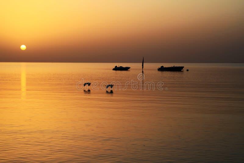 在红海日出 免版税图库摄影