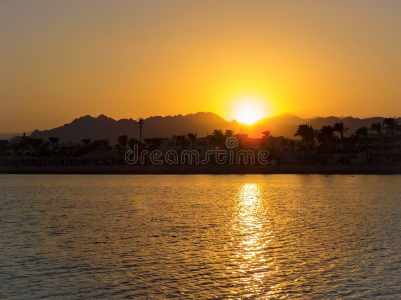 在红海的海岸的日落 免版税库存照片