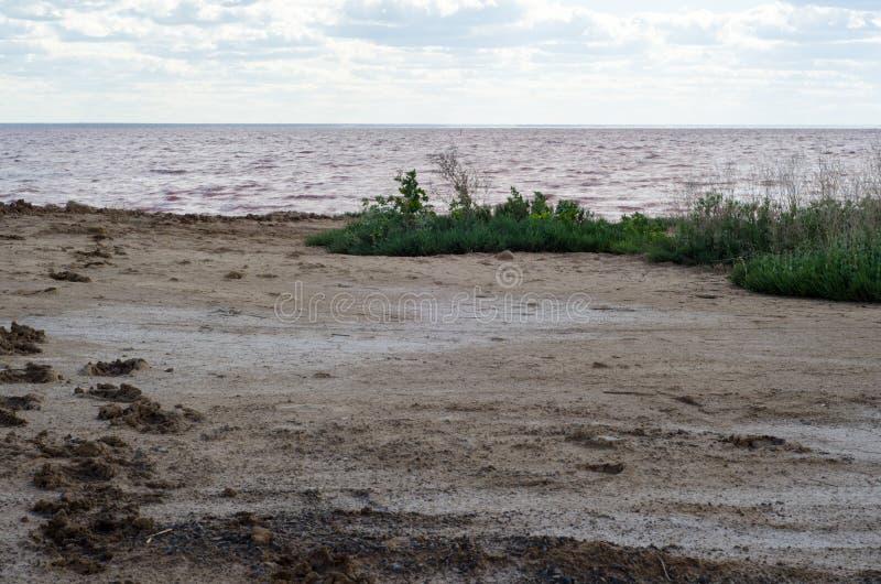 ?? 在红潮背景的云彩  免版税图库摄影
