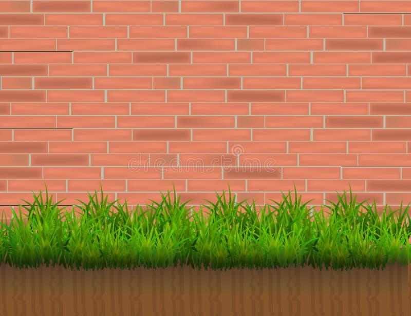 在红砖墙壁背景隔绝的绿草 皇族释放例证