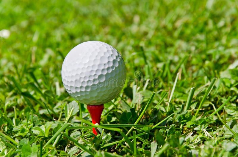 在红色发球区域的高尔夫球在草 免版税库存照片