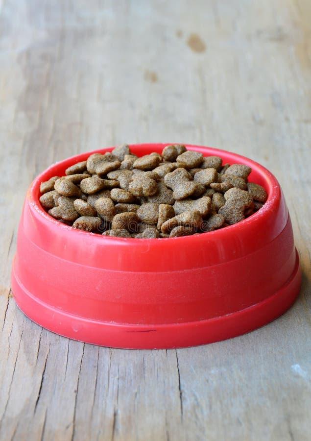 在红色塑料碗的狗食 库存图片