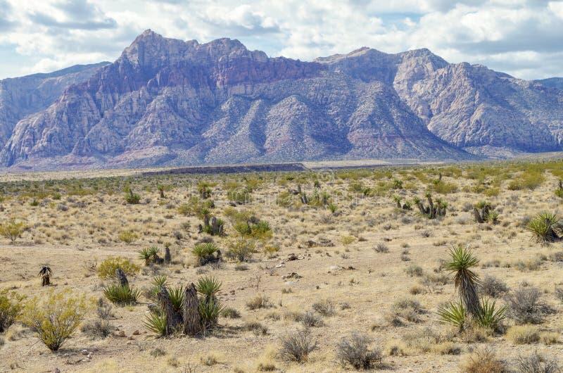在红色岩石保护地区的罕见的多云天,内华达 免版税库存图片