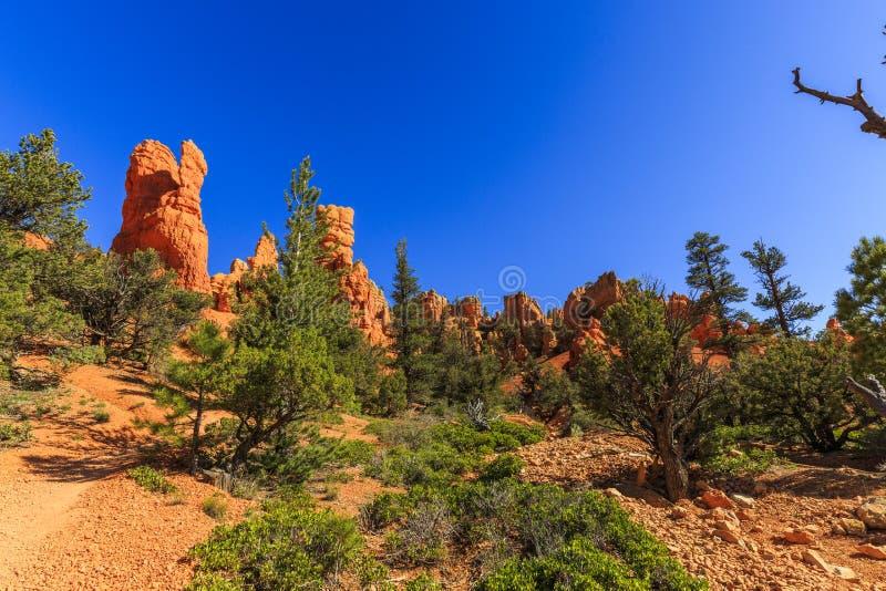 在红色峡谷的不祥之物在犹他,美国 免版税库存图片