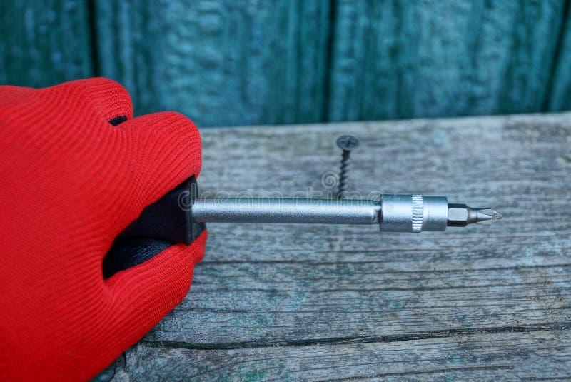 在红色手套的手拿着一把螺丝刀和一个螺丝被扭转入一个灰色木板 库存照片